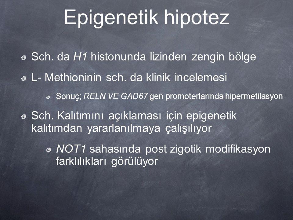 Epigenetik hipotez Sch. da H1 histonunda lizinden zengin bölge L- Methioninin sch. da klinik incelemesi Sonuç; RELN VE GAD67 gen promoterlarında hiper