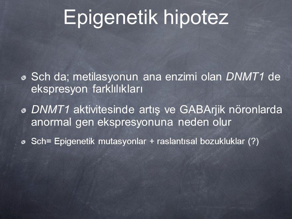 Epigenetik hipotez Sch da; metilasyonun ana enzimi olan DNMT1 de ekspresyon farklılıkları DNMT1 aktivitesinde artış ve GABArjik nöronlarda anormal gen