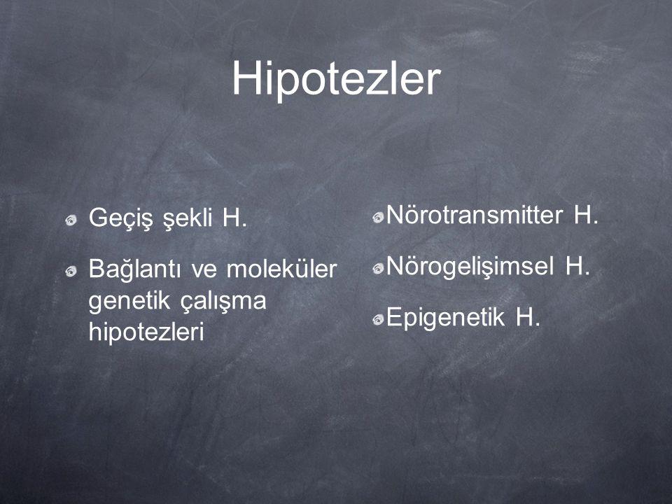 Hipotezler Geçiş şekli H. Bağlantı ve moleküler genetik çalışma hipotezleri Nörotransmitter H. Nörogelişimsel H. Epigenetik H.