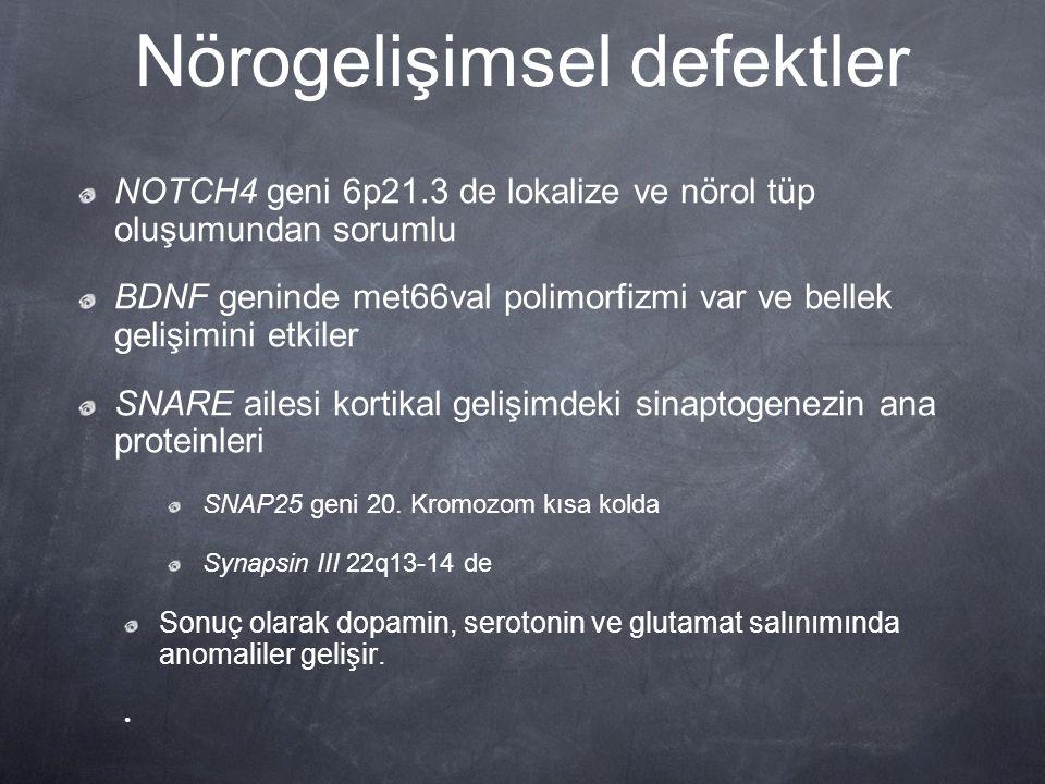 Nörogelişimsel defektler NOTCH4 geni 6p21.3 de lokalize ve nörol tüp oluşumundan sorumlu BDNF geninde met66val polimorfizmi var ve bellek gelişimini e