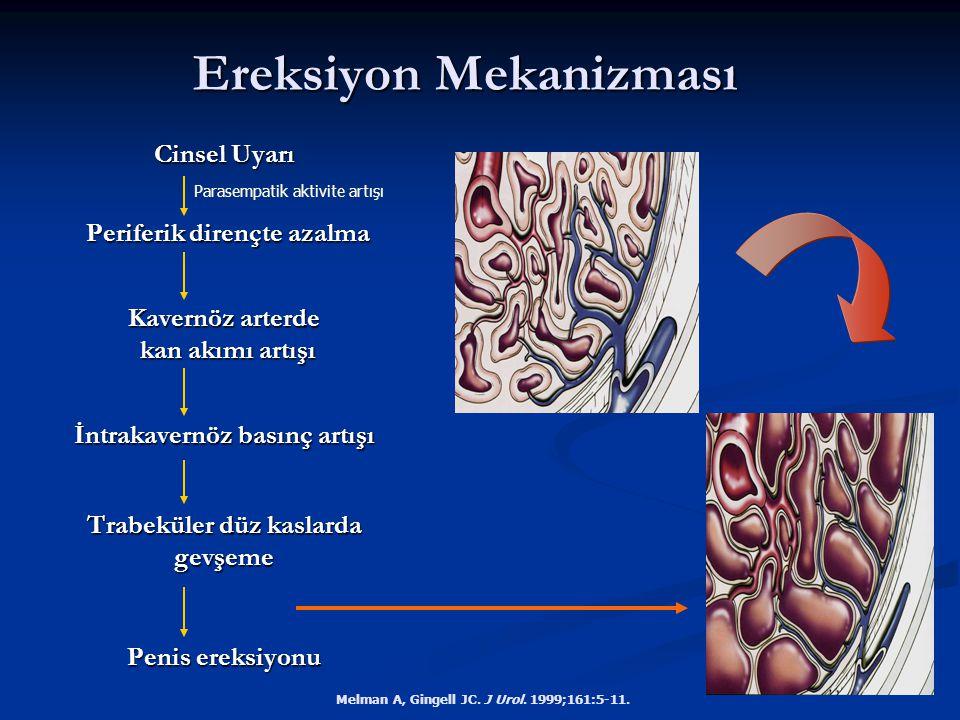 Ereksiyon Mekanizması Melman A, Gingell JC. J Urol. 1999;161:5-11. Cinsel Uyarı Periferik dirençte azalma Periferik dirençte azalma Kavernöz arterde k