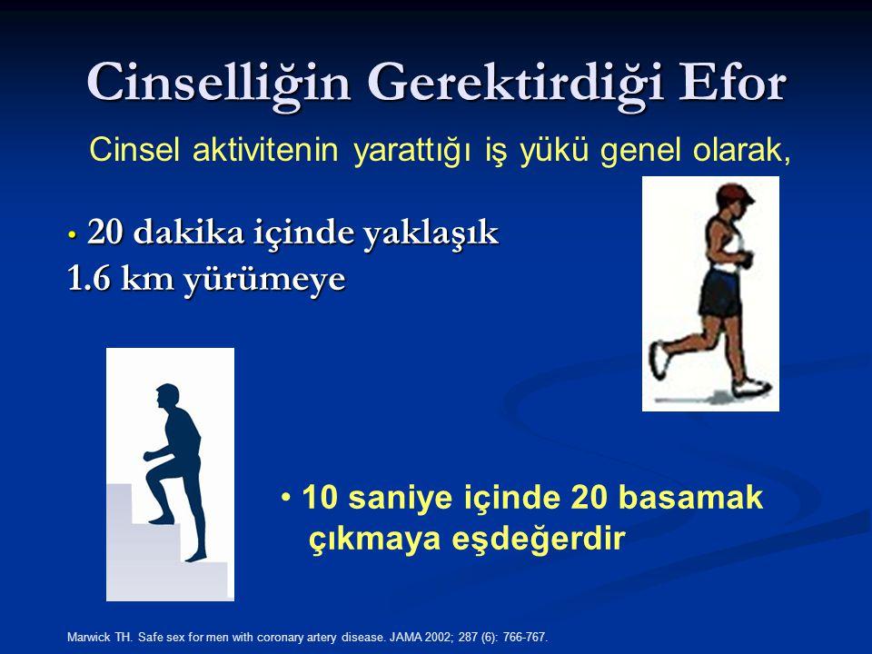 Cinselliğin Gerektirdiği Efor 20 dakika içinde yaklaşık 1.6 km yürümeye 20 dakika içinde yaklaşık 1.6 km yürümeye Cinsel aktivitenin yarattığı iş yükü genel olarak, 10 saniye içinde 20 basamak çıkmaya eşdeğerdir Marwick TH.