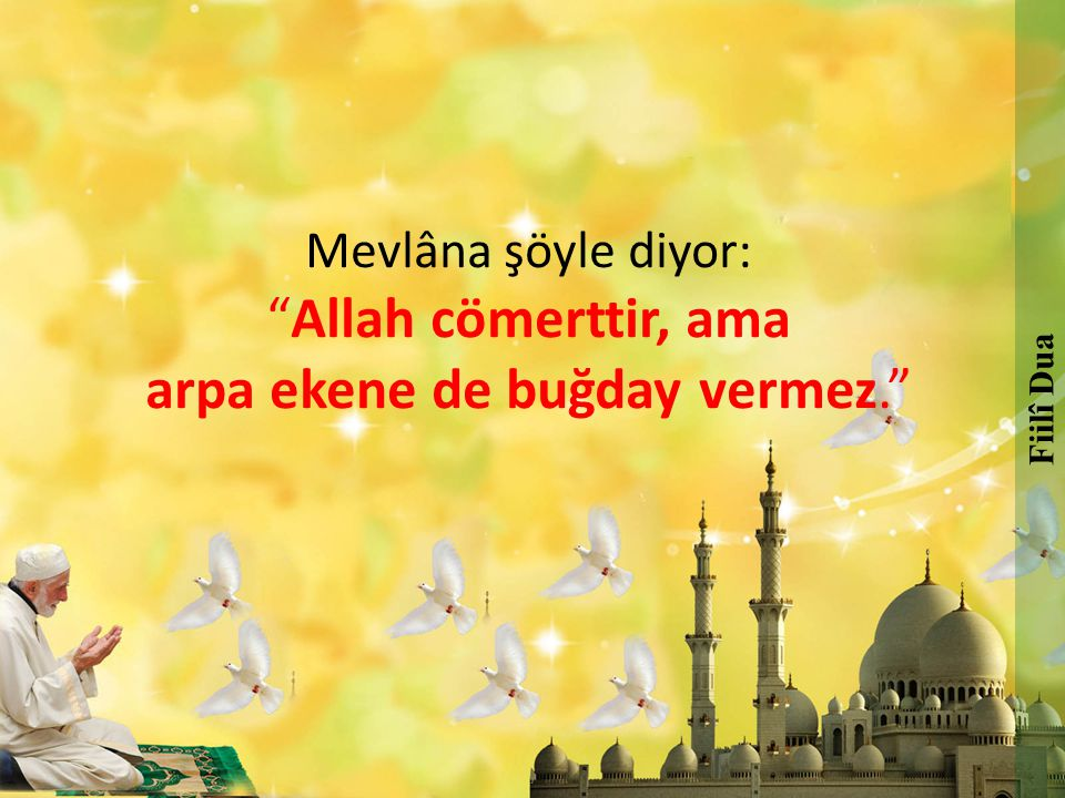 """Mevlâna şöyle diyor: """"Allah cömerttir, ama arpa ekene de buğday vermez."""" Fiilî Dua"""