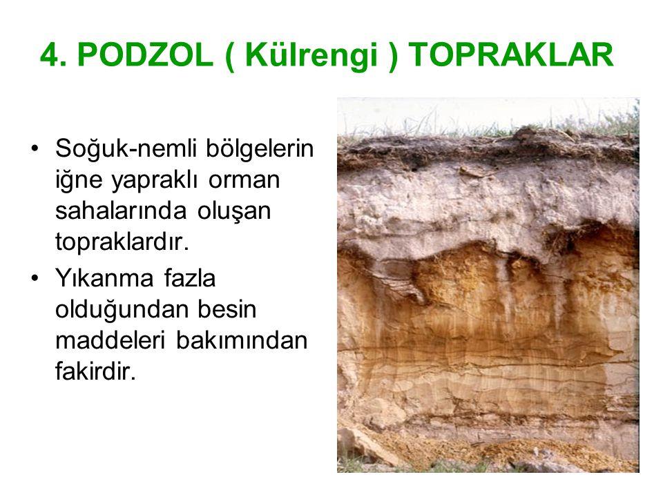 4. PODZOL ( Külrengi ) TOPRAKLAR Soğuk-nemli bölgelerin iğne yapraklı orman sahalarında oluşan topraklardır. Yıkanma fazla olduğundan besin maddeleri