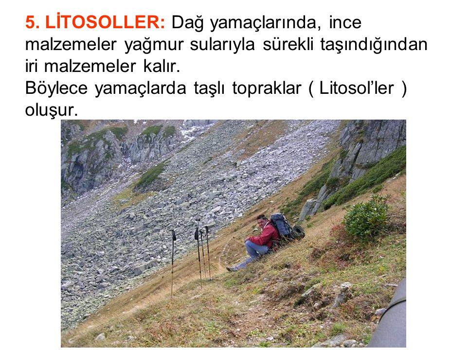 5. LİTOSOLLER: Dağ yamaçlarında, ince malzemeler yağmur sularıyla sürekli taşındığından iri malzemeler kalır. Böylece yamaçlarda taşlı topraklar ( Lit