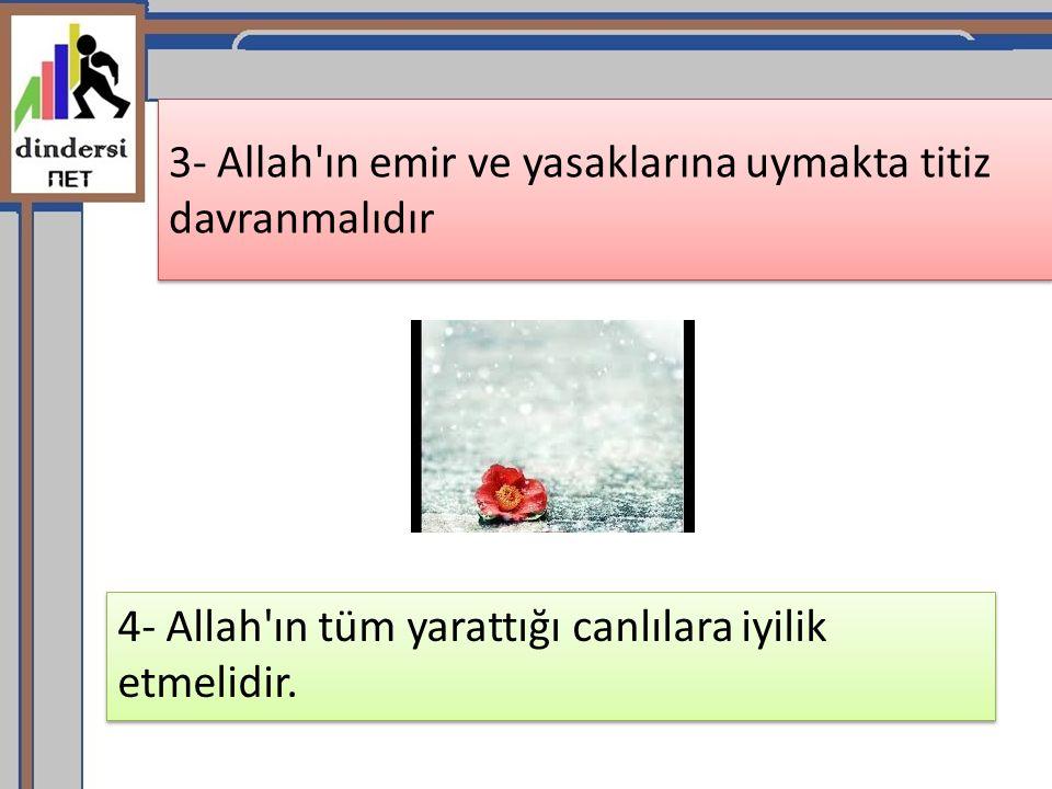 3- Allah'ın emir ve yasaklarına uymakta titiz davranmalıdır 4- Allah'ın tüm yarattığı canlılara iyilik etmelidir.