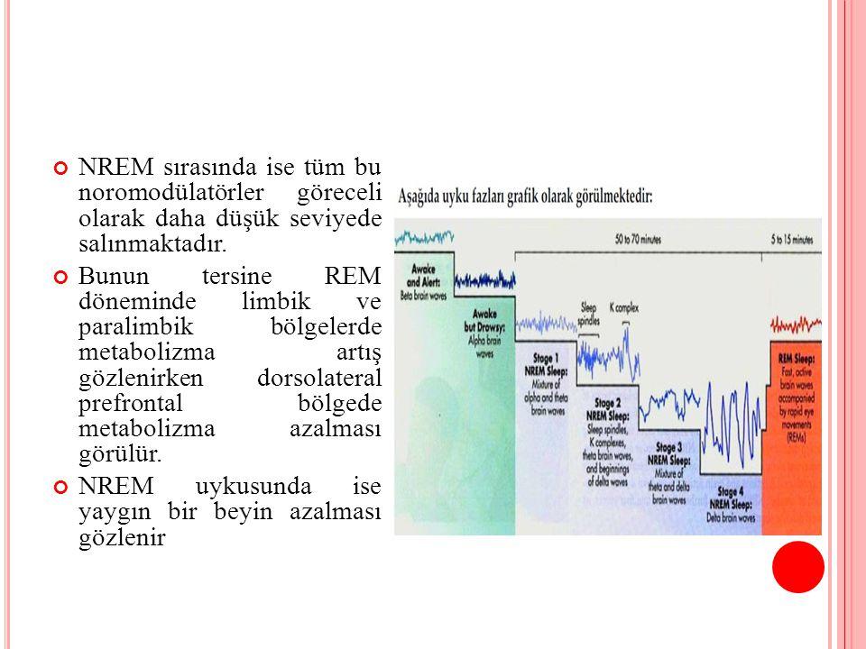 NREM sırasında ise tüm bu noromodülatörler göreceli olarak daha düşük seviyede salınmaktadır. Bunun tersine REM döneminde limbik ve paralimbik bölgele