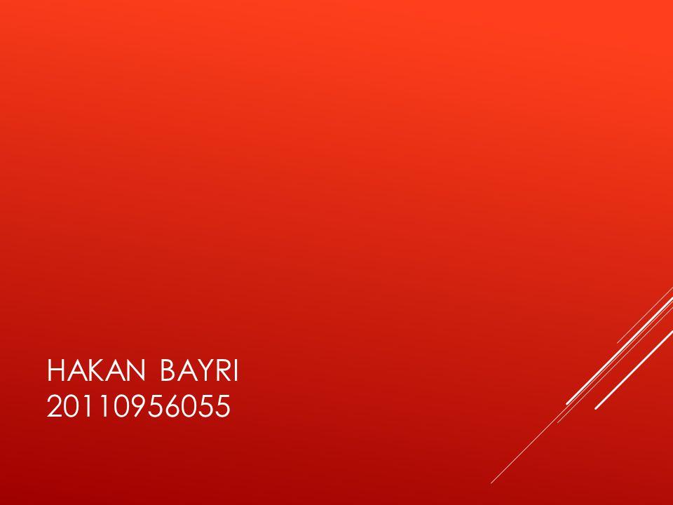 HAKAN BAYRI 20110956055