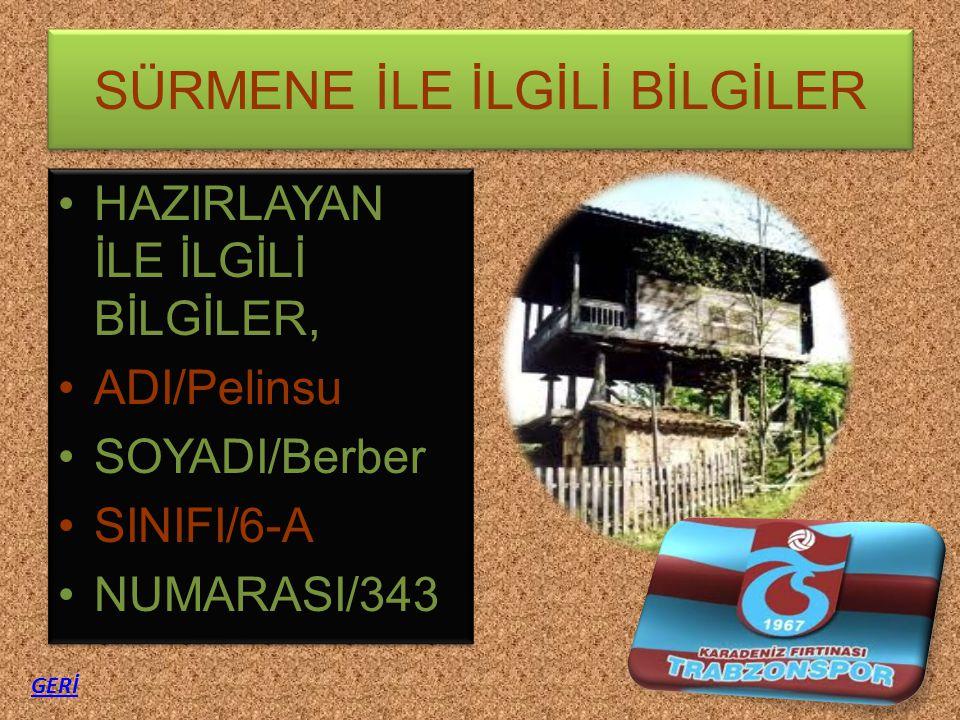 SÜRMENE İLE İLGİLİ BİLGİLER HAZIRLAYAN İLE İLGİLİ BİLGİLER, ADI/Pelinsu SOYADI/Berber SINIFI/6-A NUMARASI/343 HAZIRLAYAN İLE İLGİLİ BİLGİLER, ADI/Peli