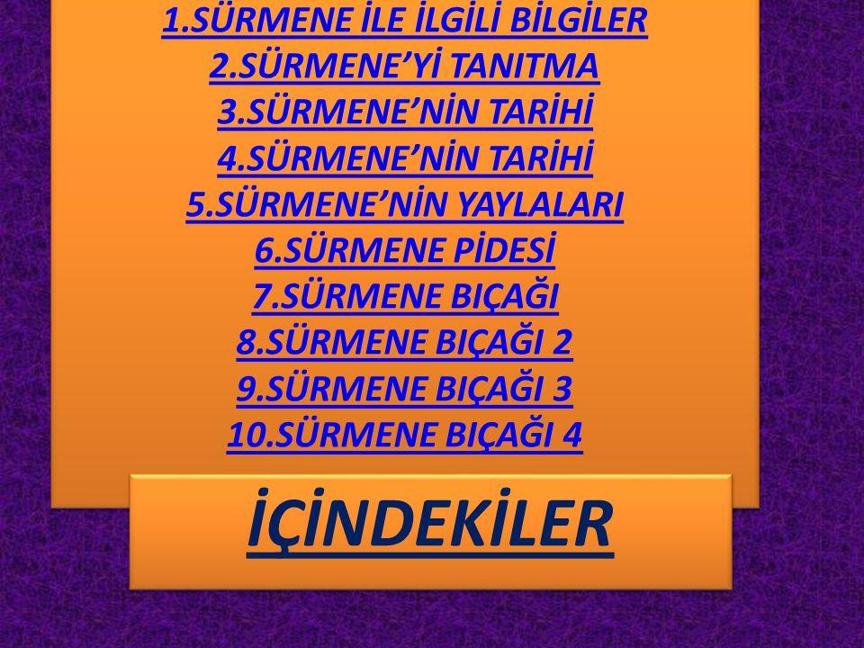 1.SÜRMENE İLE İLGİLİ BİLGİLER 2.SÜRMENE'Yİ TANITMA 3.SÜRMENE'NİN TARİHİ 4.SÜRMENE'NİN TARİHİ 5.SÜRMENE'NİN YAYLALARI 6.SÜRMENE PİDESİ 7.SÜRMENE BIÇAĞI