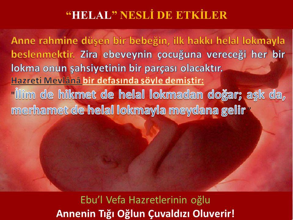 Ebu'l Vefa Hazretlerinin oğlu Annenin Tığı Oğlun Çuvaldızı Oluverir!