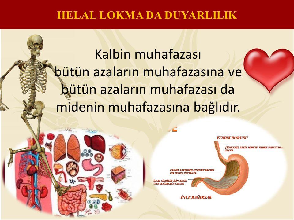 HELAL LOKMA DA DUYARLILIK Kalbin muhafazası bütün azaların muhafazasına ve bütün azaların muhafazası da midenin muhafazasına bağlıdır.