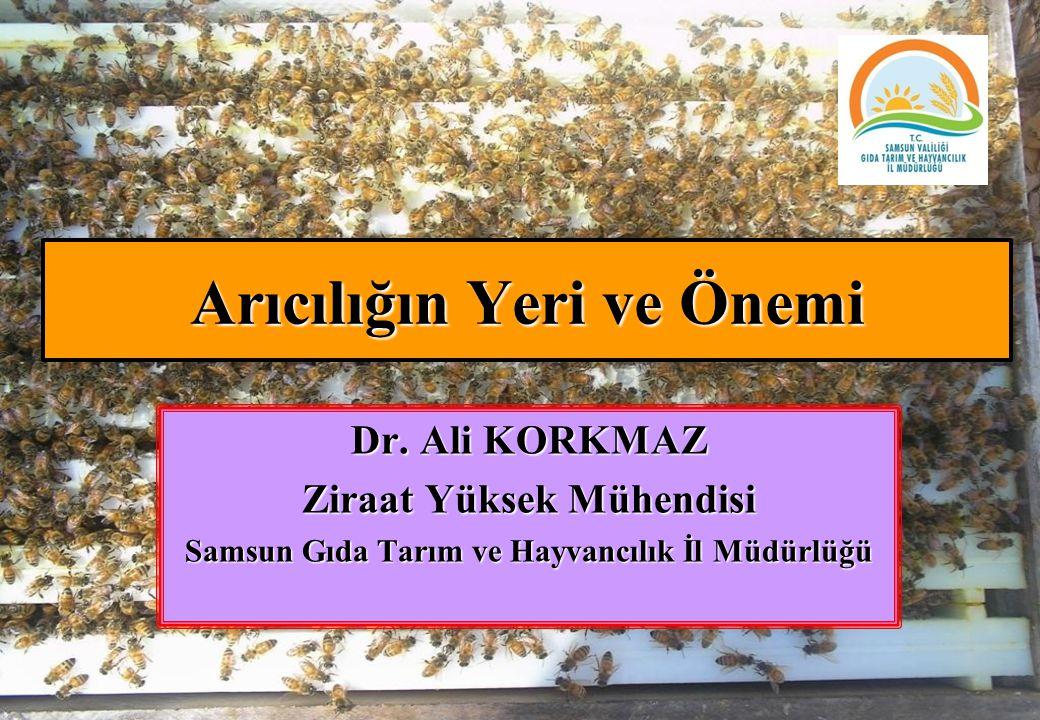 Arıcılığın Yeri ve Önemi Dr. Ali KORKMAZ Ziraat Yüksek Mühendisi Samsun Gıda Tarım ve Hayvancılık İl Müdürlüğü