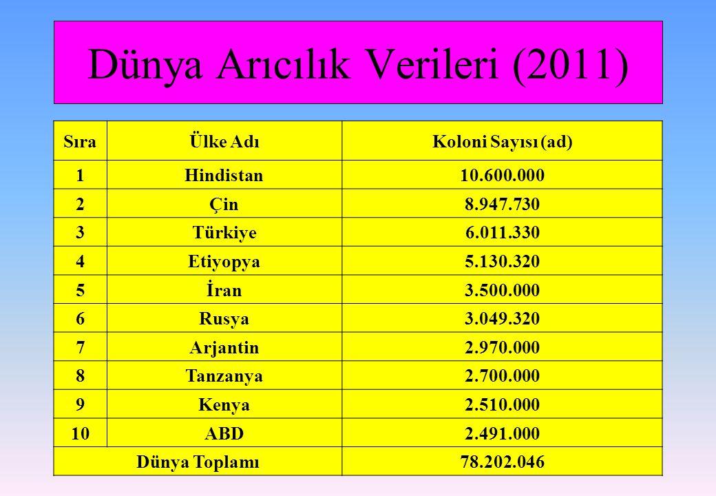 Dünya Arıcılık Verileri (2011) SıraÜlke AdıKoloni Sayısı (ad) 1Hindistan10.600.000 2Çin8.947.730 3Türkiye6.011.330 4Etiyopya5.130.320 5İran3.500.000 6