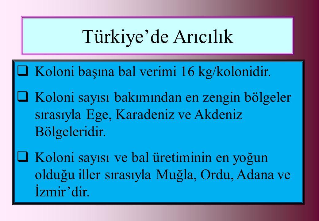 Türkiye'de Arıcılık  Koloni başına bal verimi 16 kg/kolonidir.  Koloni sayısı bakımından en zengin bölgeler sırasıyla Ege, Karadeniz ve Akdeniz Bölg
