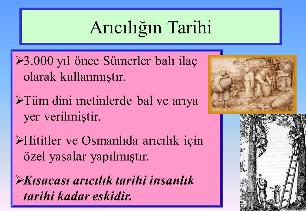 Arıcılığın Tarihi  3.000 yıl önce Sümerler balı ilaç olarak kullanmıştır.  Tüm dini metinlerde bal ve arıya yer verilmiştir.  Hititler ve Osmanlıda