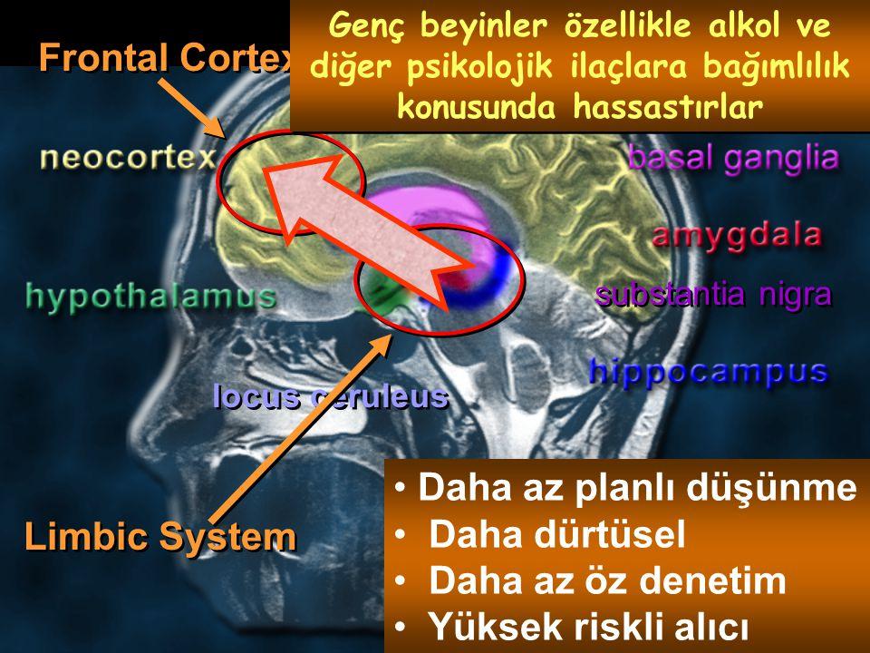 substantia nigra locus ceruleus Limbic System Frontal Cortex Genç beyinler özellikle alkol ve diğer psikolojik ilaçlara bağımlılık konusunda hassastırlar Daha az planlı düşünme Daha dürtüsel Daha az öz denetim Yüksek riskli alıcı