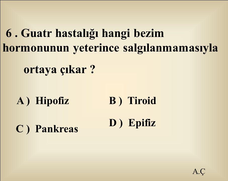 A.Ç 6. Guatr hastalığı hangi bezim hormonunun yeterince salgılanmamasıyla ortaya çıkar ? A ) HipofizB ) Tiroid C ) Pankreas D ) Epifiz