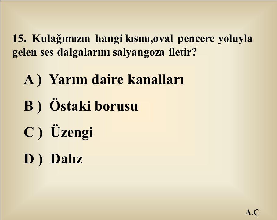 A.Ç 15. Kulağımızın hangi kısmı,oval pencere yoluyla gelen ses dalgalarını salyangoza iletir? A ) Yarım daire kanalları B ) Östaki borusu C ) Üzengi D