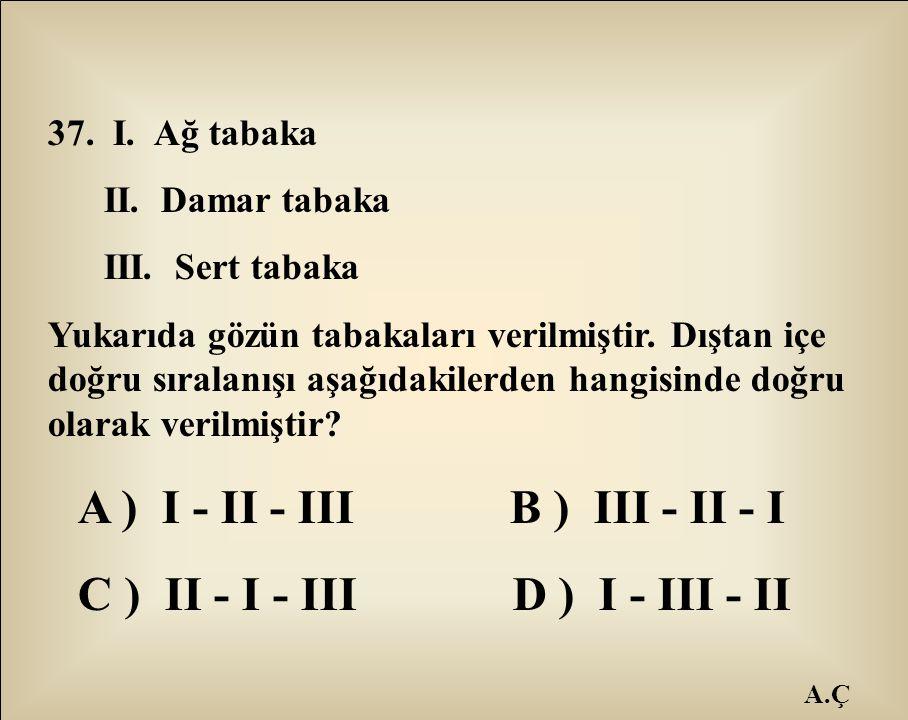 A.Ç 37. I. Ağ tabaka II. Damar tabaka III. Sert tabaka Yukarıda gözün tabakaları verilmiştir. Dıştan içe doğru sıralanışı aşağıdakilerden hangisinde d