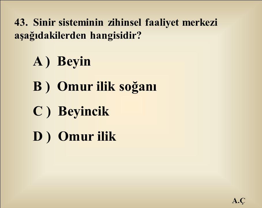 A.Ç 43. Sinir sisteminin zihinsel faaliyet merkezi aşağıdakilerden hangisidir? A ) Beyin B ) Omur ilik soğanı C ) Beyincik D ) Omur ilik