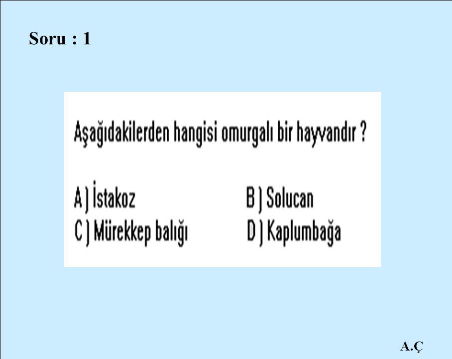 A.Ç Soru : 1