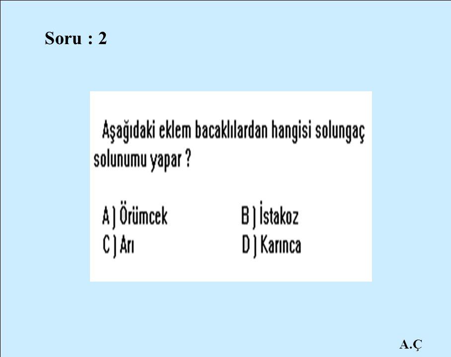 A.Ç Soru : 2