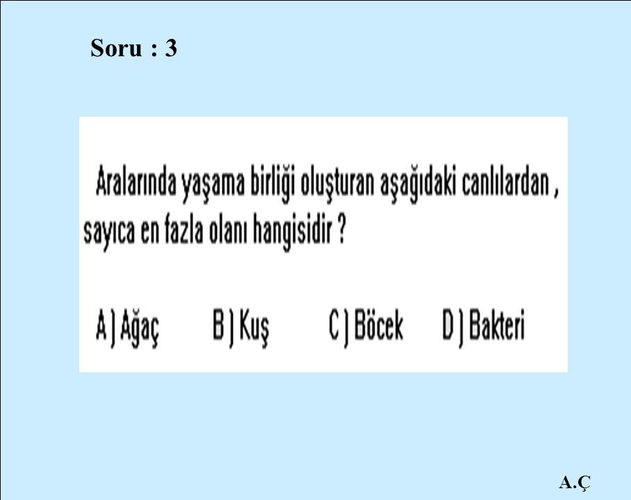 A.Ç Soru : 3