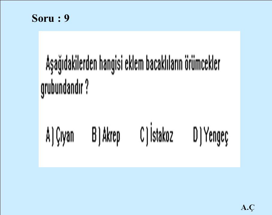 A.Ç Soru : 9