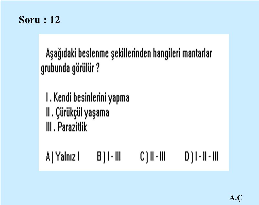 A.Ç Soru : 12