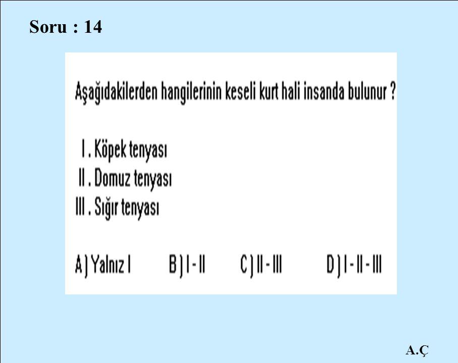 A.Ç Soru : 14