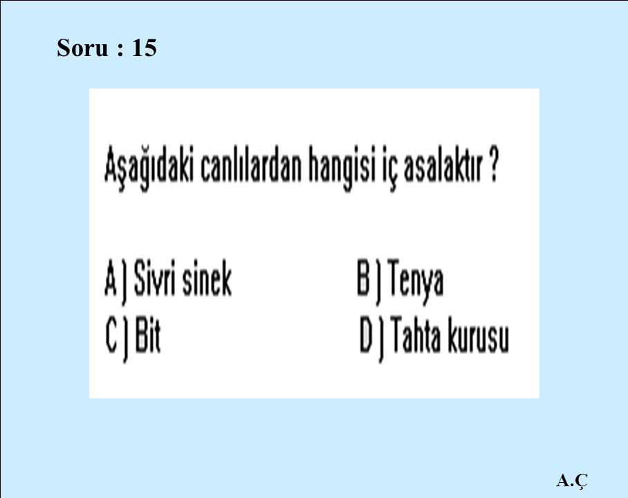 A.Ç Soru : 15