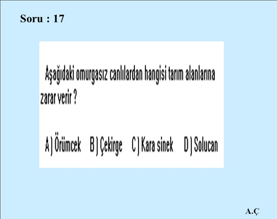 A.Ç Soru : 17