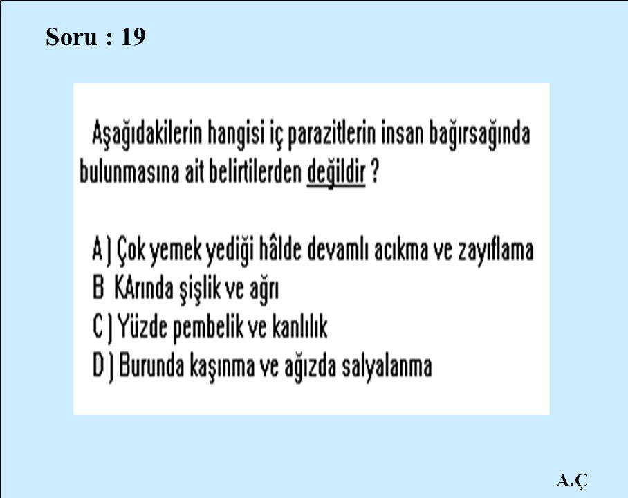 A.Ç Soru : 19