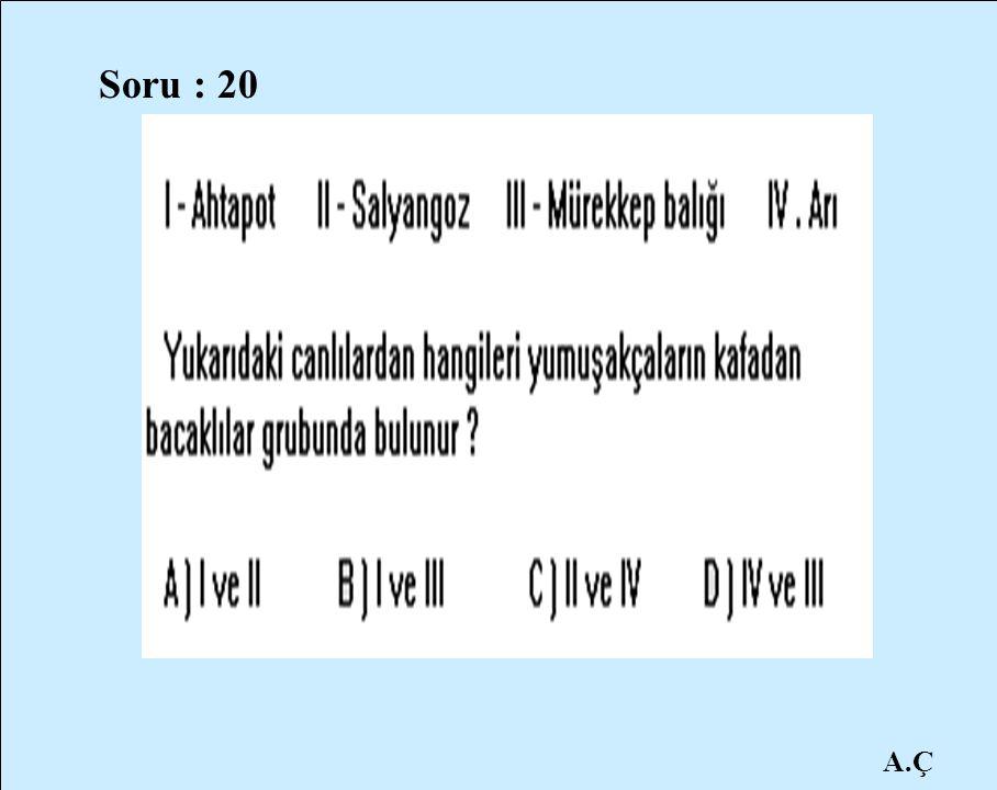 A.Ç Soru : 20