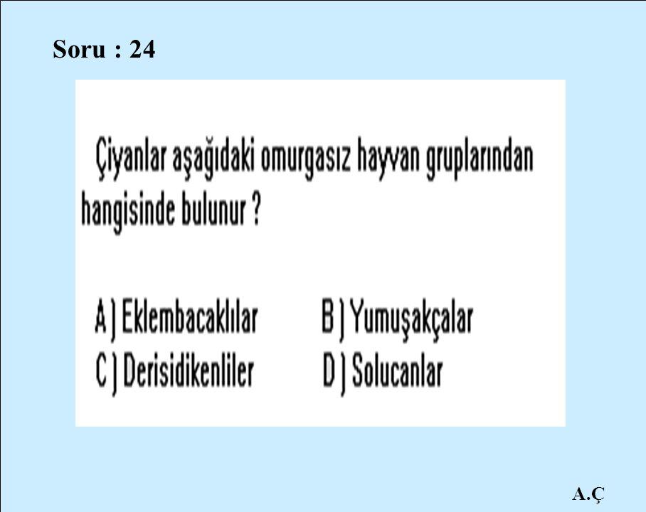 A.Ç Soru : 24