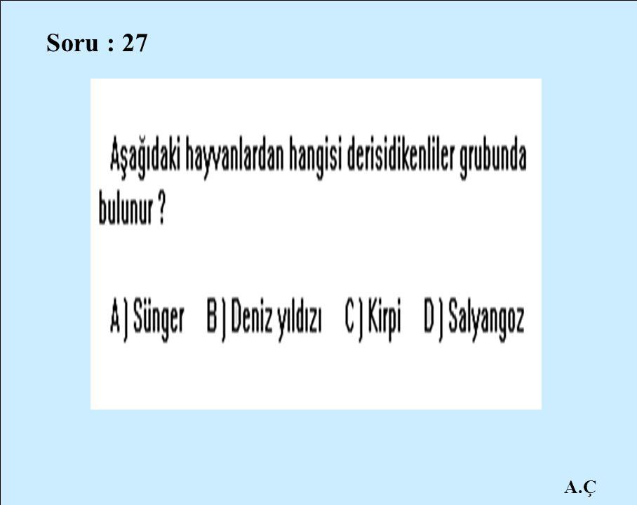 A.Ç Soru : 27