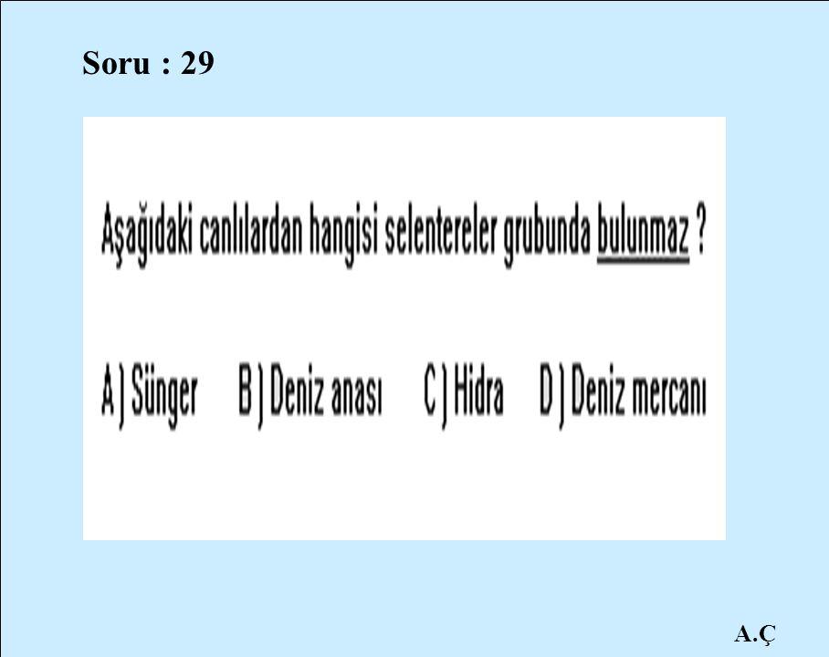 A.Ç Soru : 29