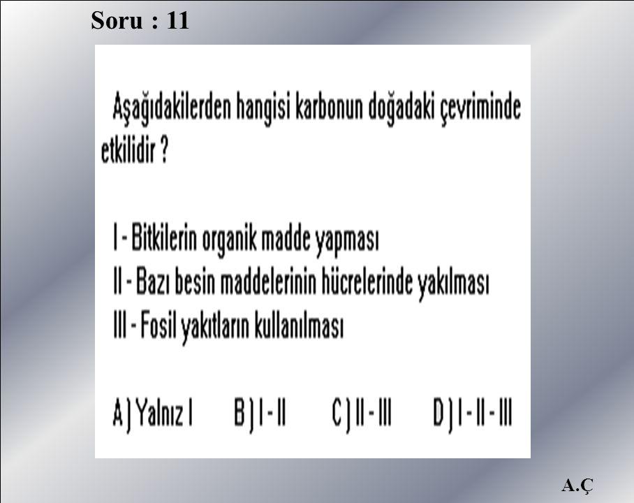A.Ç Soru : 11