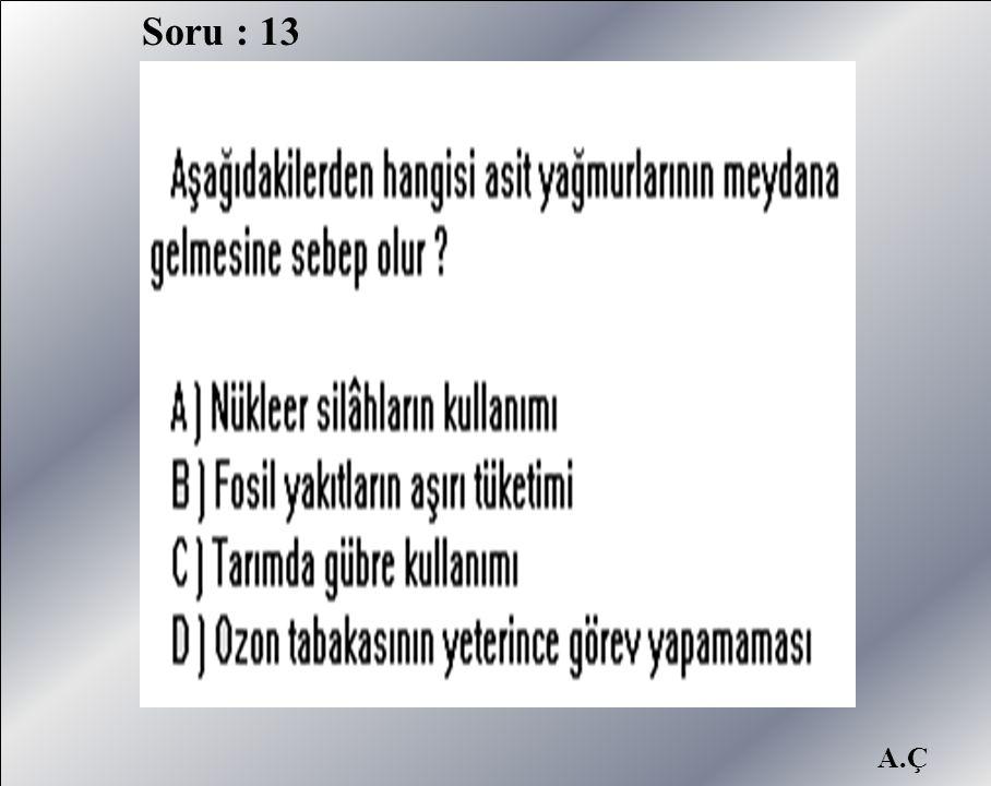 A.Ç Soru : 13
