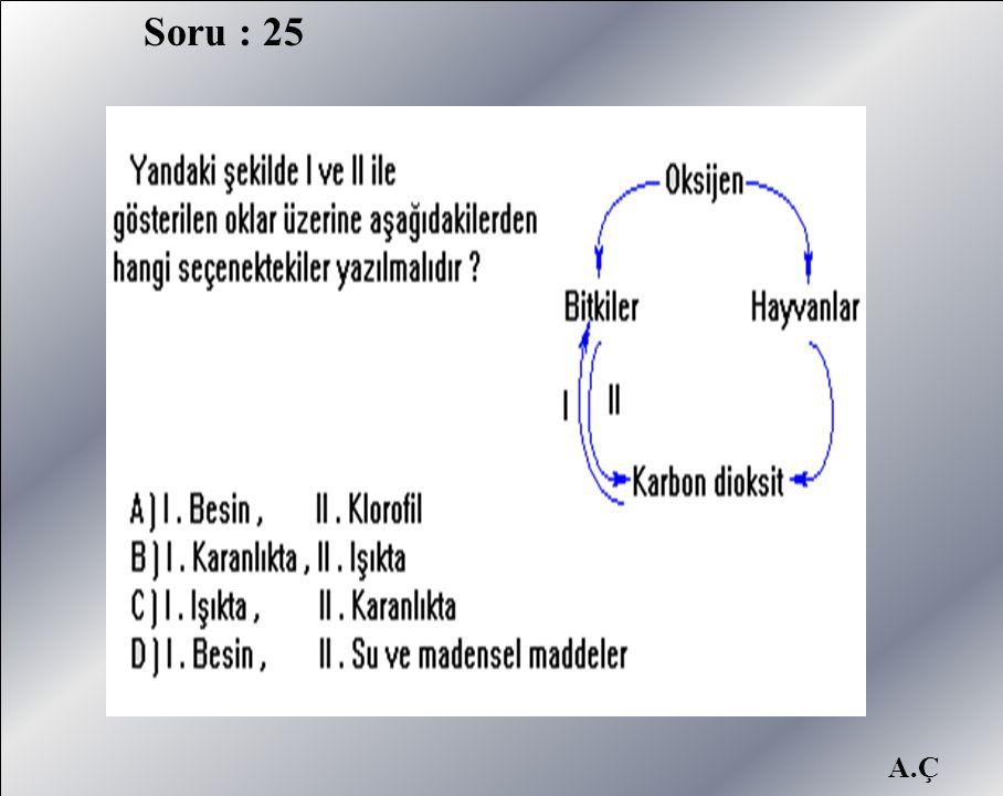 A.Ç Soru : 25