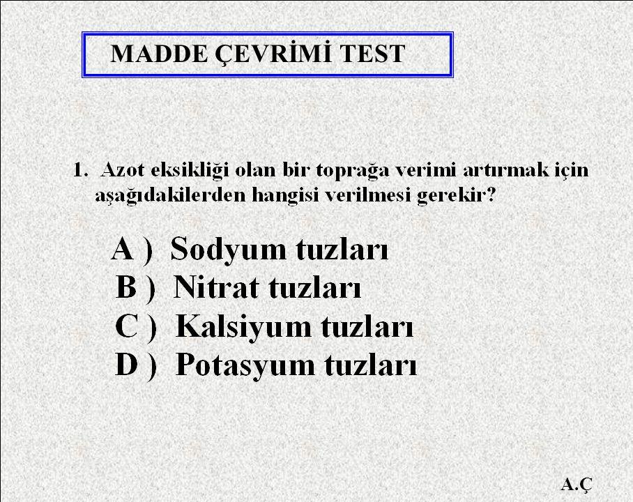 MADDE ÇEVRİMİ TEST