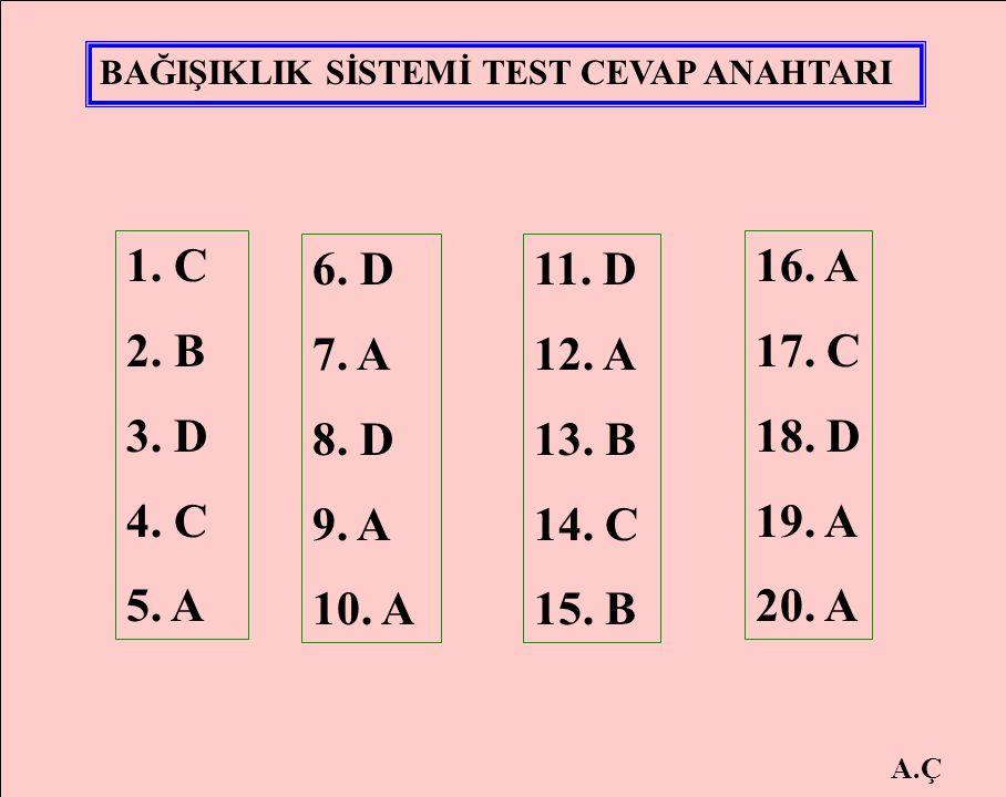 1. C 2. B 3. D 4. C 5. A 6. D 7. A 8. D 9. A 10. A 11. D 12. A 13. B 14. C 15. B 16. A 17. C 18. D 19. A 20. A BAĞIŞIKLIK SİSTEMİ TEST CEVAP ANAHTARI
