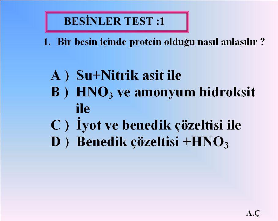 BESİNLER TEST :1