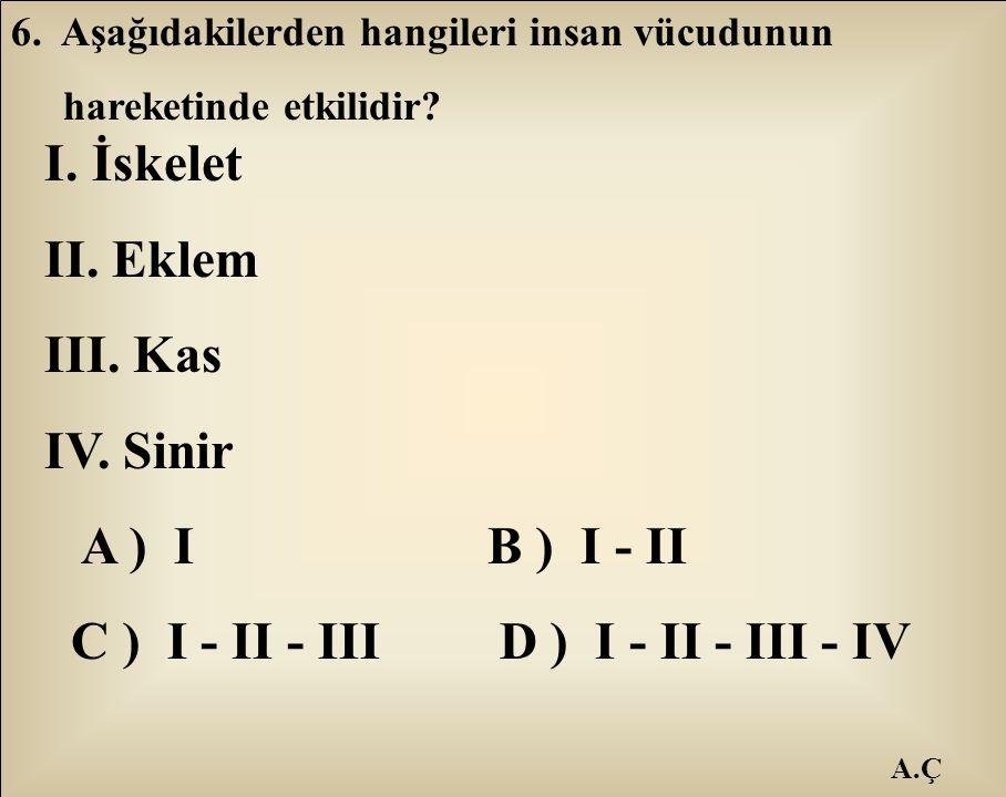 A.Ç 6. Aşağıdakilerden hangileri insan vücudunun hareketinde etkilidir? I. İskelet II. Eklem III. Kas IV. Sinir A ) I B ) I - II C ) I - II - III D )
