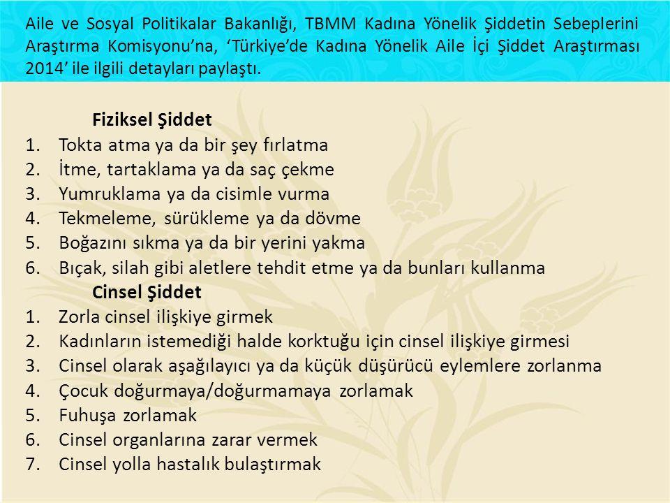 Aile ve Sosyal Politikalar Bakanlığı, TBMM Kadına Yönelik Şiddetin Sebeplerini Araştırma Komisyonu'na, 'Türkiye'de Kadına Yönelik Aile İçi Şiddet Araş