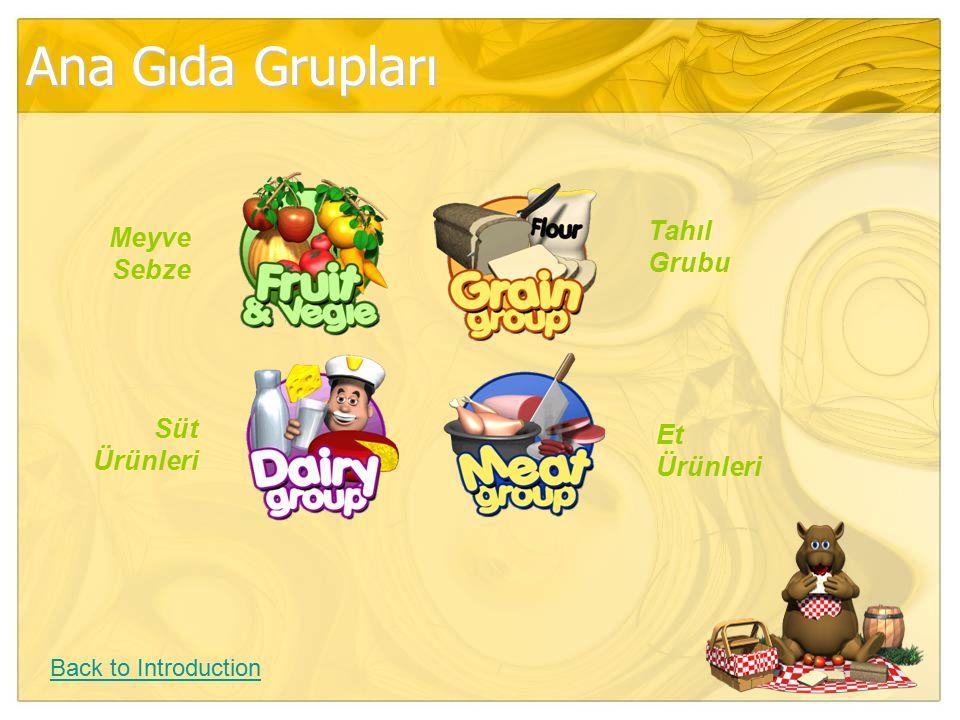 Ana Gıda Grupları Back to Introduction Meyve Sebze Tahıl Grubu Süt Ürünleri Et Ürünleri