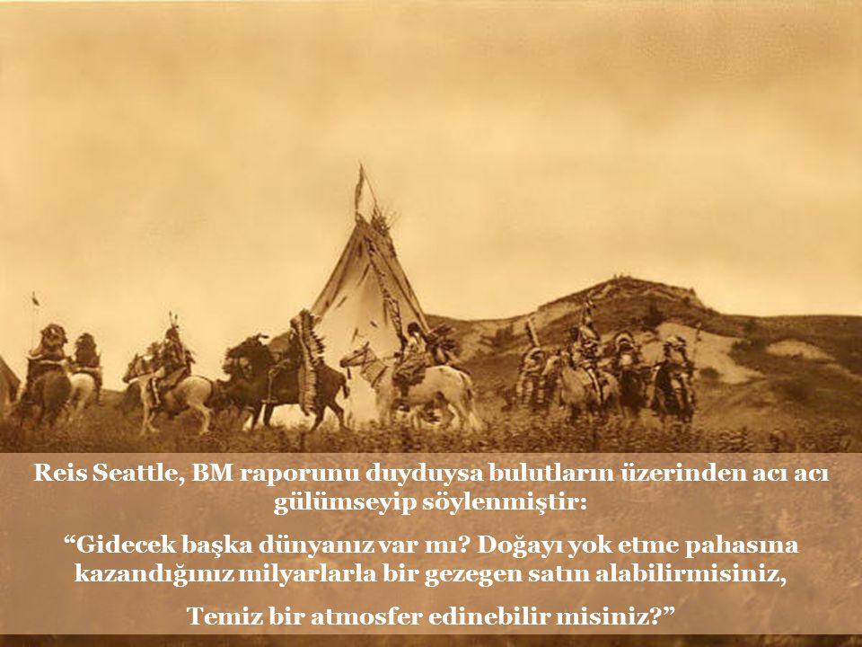 Kızılderili reisi Seattle'ın mektubu, dünyanın içinde bulunduğu durumu BM'nin raporundan çok daha acı ve gerçekçi biçimde anlatmaya yetiyor.