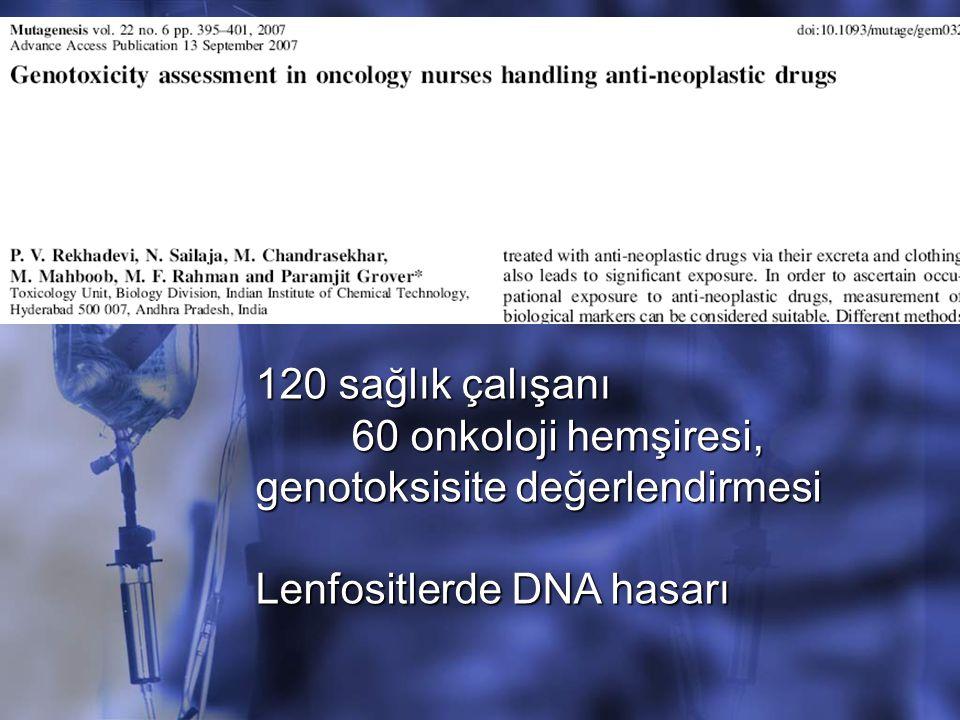 120 sağlık çalışanı 60 onkoloji hemşiresi, genotoksisite değerlendirmesi Lenfositlerde DNA hasarı