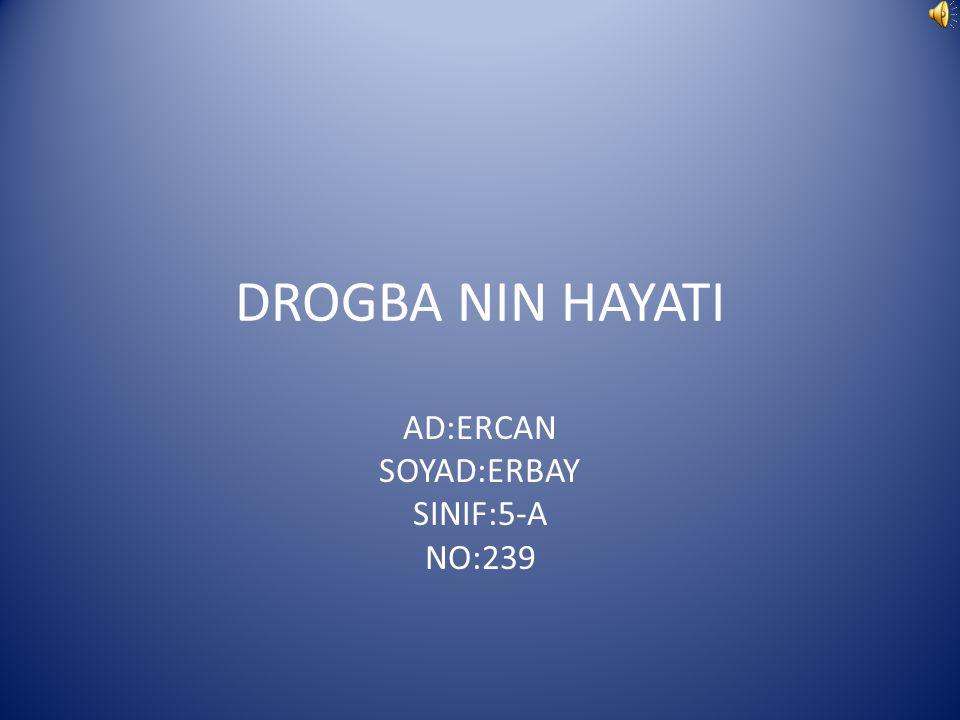 DROGBA NIN HAYATI AD:ERCAN SOYAD:ERBAY SINIF:5-A NO:239